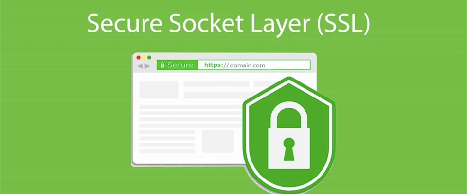 WonderWebs Secure Certificates (SSL) Offer